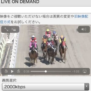 南関東4競馬場ライブ